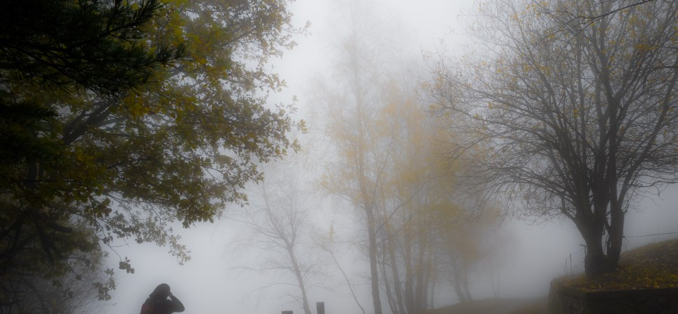 The Mist in Which I Fed by Fabio Bertuzzo